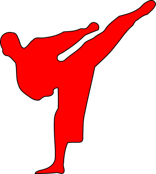 martial-arts-303863_1280